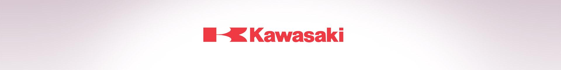 Ricambi Kawasaki