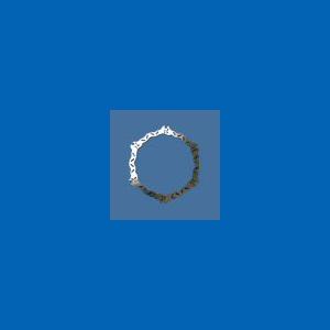 disco freno anteriore - BL02FID
